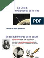 1m 1.2 Teoria Celular