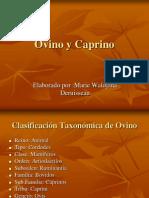 caprinoyovino-100509224506-phpapp01
