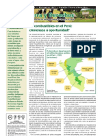 Boletin_Biocombustibles en el Perú_ 2