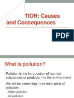 Pollution Causes and Consequences (1)