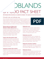 Bamboo Fact Sheet