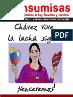 Periódico Insumisas elecciones 2013