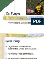 6 e 7[1]. Os Fungos.ppt