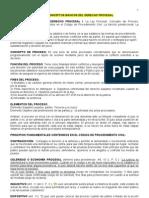 Guia Reparacion Todos Los Temas de Procesal Civil[1]