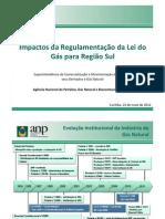 Impactos da Regulamentação da Lei do Gás para a Região Sul