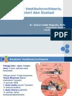 Dr Zainuri-Organon Vestibulococlear
