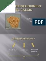 Ciclo Biogeoquimico Del Calcio