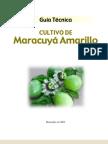 Guia Tecnica Del Maracuya