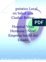 Diagnostico Local 2011