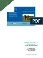 INTA_Eficiencia_ Reproductiva.pdf