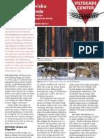 Sådan genkender du ulve – svensk faktablad (2012)