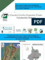 Acuerdo recíproco por el agua, en la microcuenca Las Cruces, San Vicente de Chucurí, Santander