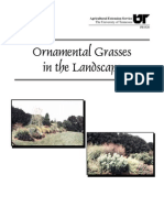 Ornamental Grasses in the Landscape (PB1626)