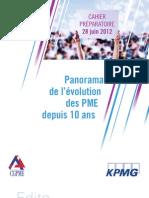 Evolution Des PME Depuis 10ans 2012 (KPMG)