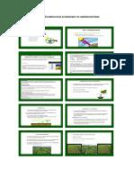 Luz y Su Influencia en El Ecosistema y El Agroecosistema