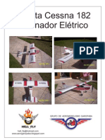 Planta Cessna Hell Fly