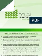 Presentación Bolsa de productos