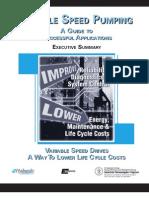 VSP Guide Executive Summary