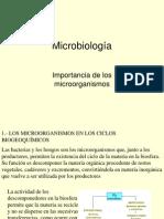 importanciamicroorganismos-110411135252-phpapp02