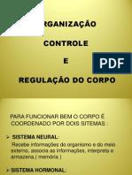 Organização, controle
