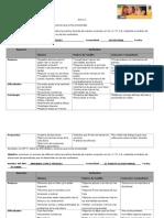 Cuadros de Analisis de Avances, Dificultades y Estrategis.