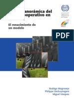 Vision Panoramica Sector Cooperativo en Peru