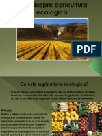 Totul Despre Agricultura Ecologica-prezentare Power Point