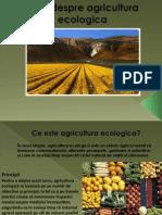 Totul Despre Agricultura Ecologica-prezentare Power Point