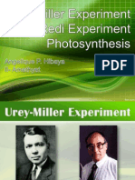Urey-Miller and Redi Experiment, Photosynthesis
