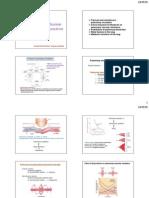 Perfusion_MD55.pdf