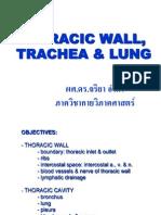 L4-6.pdf