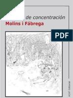 288375 Acvf Campos de Concentracion