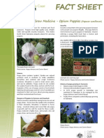 Factsheet Fertile+Soils+Grow+Medicine