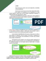 proyectoexpgraf