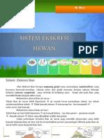 Sistem Ekskresi Hewan