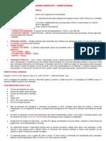 RESUMO COMPLETO (1).docx