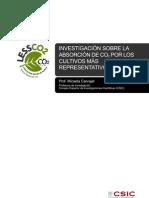 ponencia_cisc_espanol.pdf