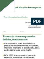 1. Prezentare TEMA1MAI Internationalizarea Afacerilor