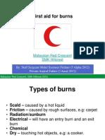 Professional edition manual pdf merck