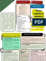 Formas especiales de conclusión y Juzgamiento anticipado del Proceso-TRÍPTICO-ULADECH PIURA-EDUARDO AYALA TANDAZO