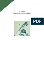 56615074-Apostila-Micologia
