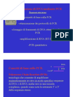 1-Amplificazione Di DNA Per PCR