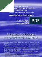 20091011 Proceso Cautelar