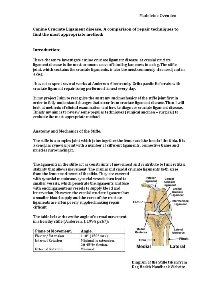 extended project qualification | Anatomical Terms Of Motion | Joints