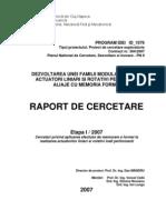 Raport de Cercetare