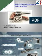 Heridas Por Arma de Fuego PDF 2013