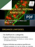5 Histologc3ada Del Sistema Linfc3a1tico