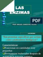 t3 - Las Enzimas