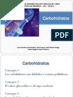 Tema 4 Carbohidratos