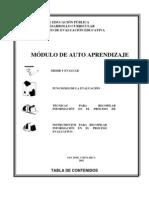 MODULO DE AUTO APRENDIZAJE EVALUACIÓN